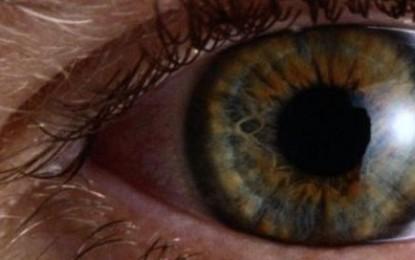 La cécité ou la perte de vue